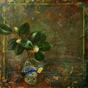 01 Camellia sonata